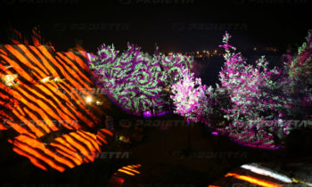 Projektion von Grafiken auf das Laub von Pflanzen