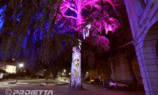 Giaveno: Cedro del Libano Parlante